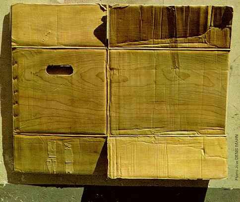 Grosses taches et pointillés (peinture fraîche... ou pas et autres babioles) Christian-renonciat-carton-